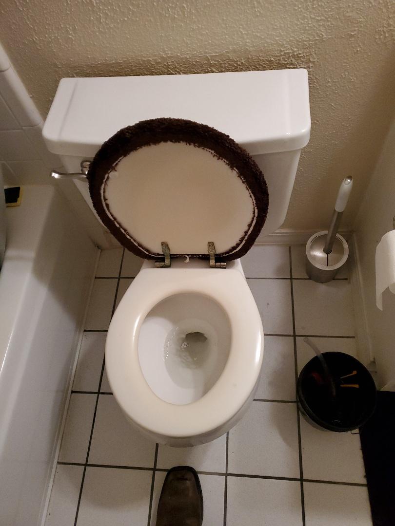 Repair toilet