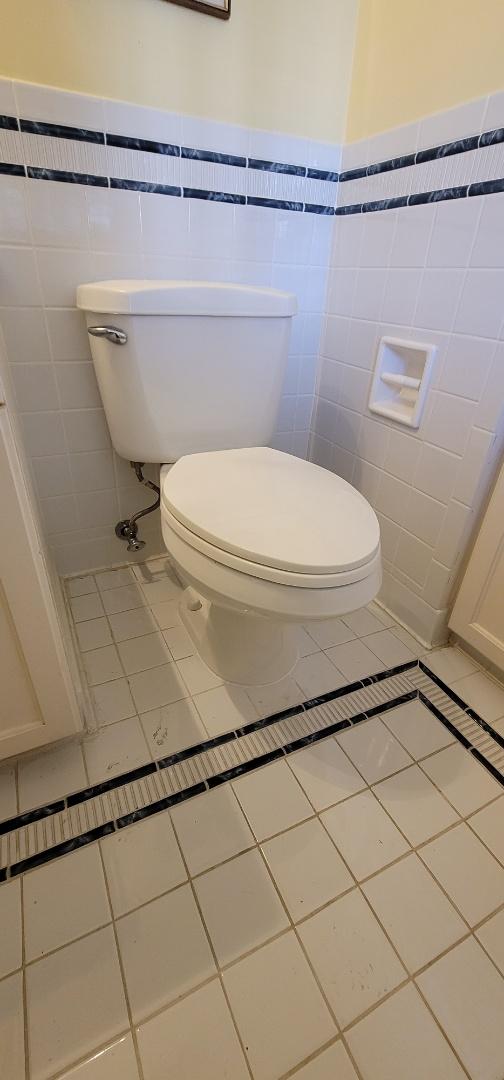 Houston, TX - Toilet repair Flange 77005