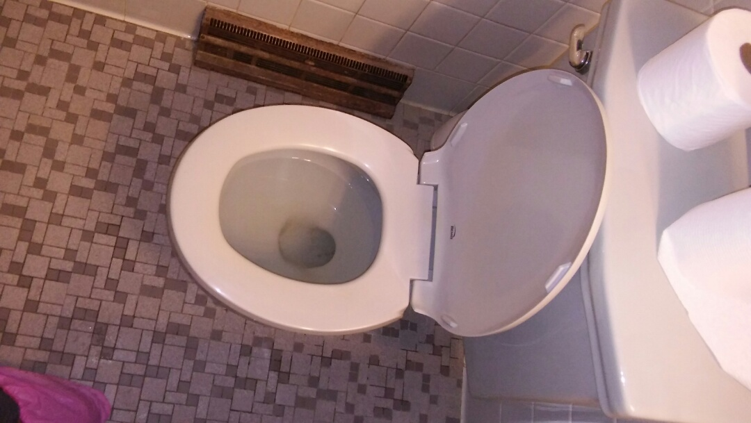 Waltham, MA - Repaired toilet Repair leaking toilet Sewer drain repair Clogged toilet  Clogged sink drain Rooter