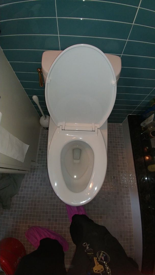 Lexington, MA - Clogged toilet rooter plumbing install plumbing repair drain cleaning drain clearing