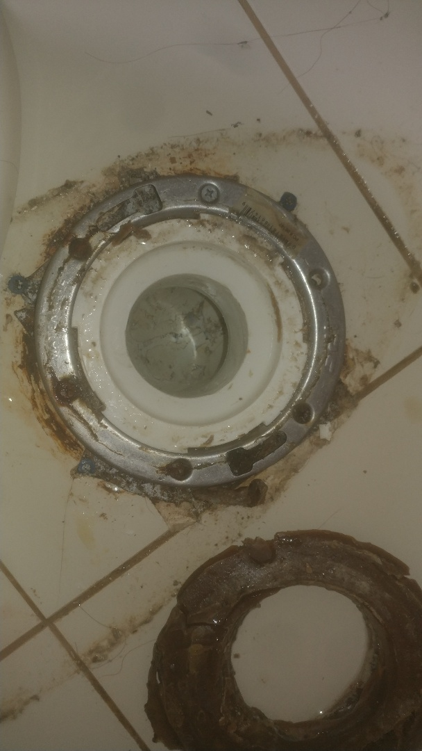 Boston, MA - Main sewer Drain clog clogged drains sewage odor drain snaking rooter services plumbing re-pipe clogged laundry drain