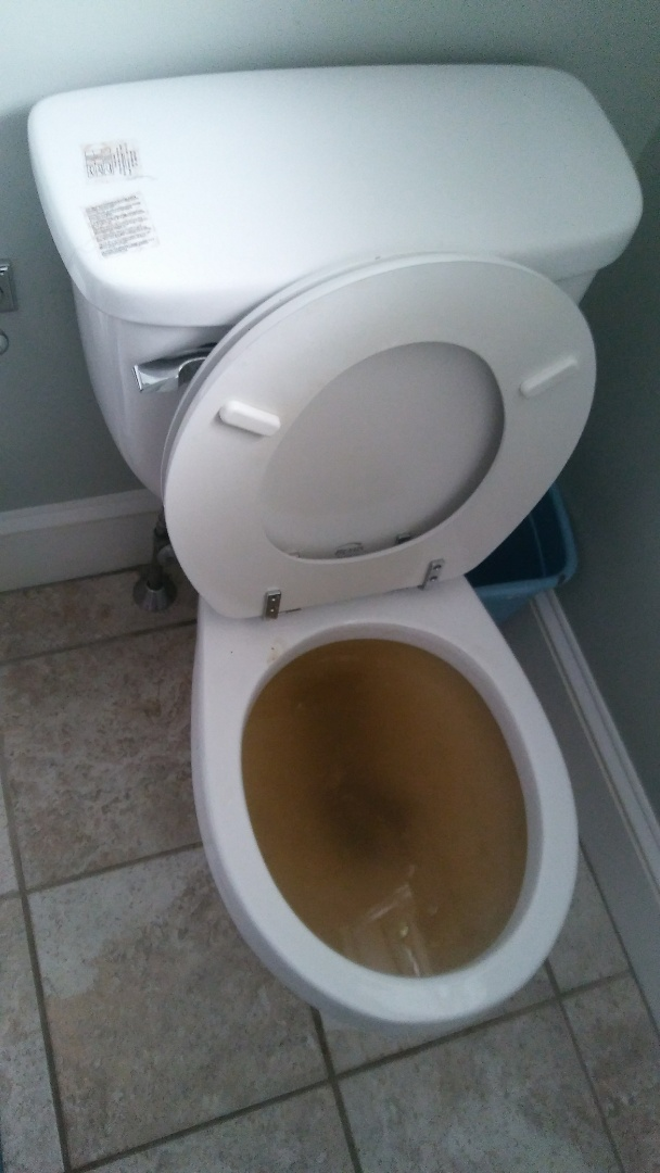 Natick, MA - Clear toilet clog, rooter toilet