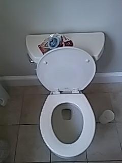 Waltham, MA - Replacing toilet flapper