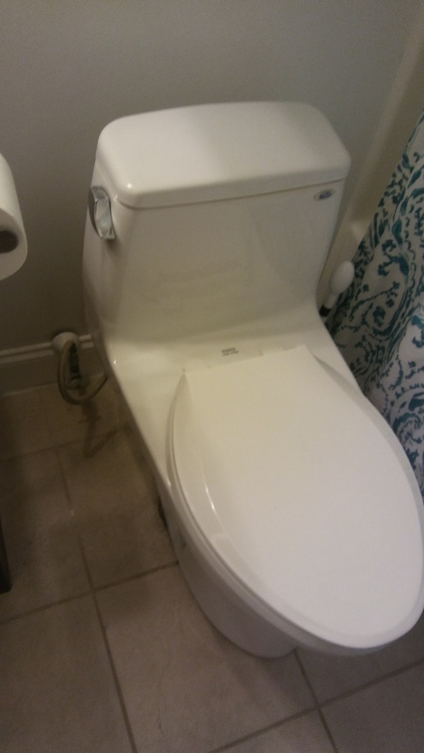 Milford, MA - Clearing clogged toilet, rooter toilet clog