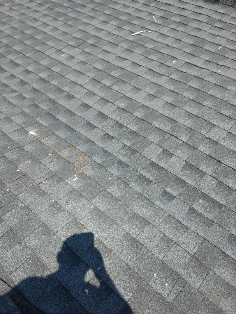 Kingsport, TN - This home needs a roof repair. It's shingles are leaking where it transitions to the addition.