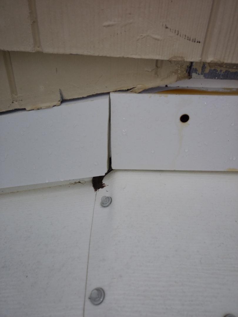 Kingsport, TN - Finding a leak on a bay window