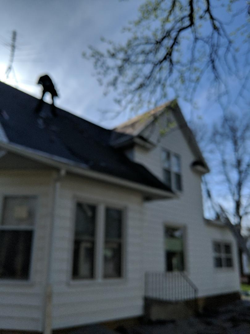River Falls, WI - Installing asphalt shingles CertainTeed landmark the color black two-story steep roof