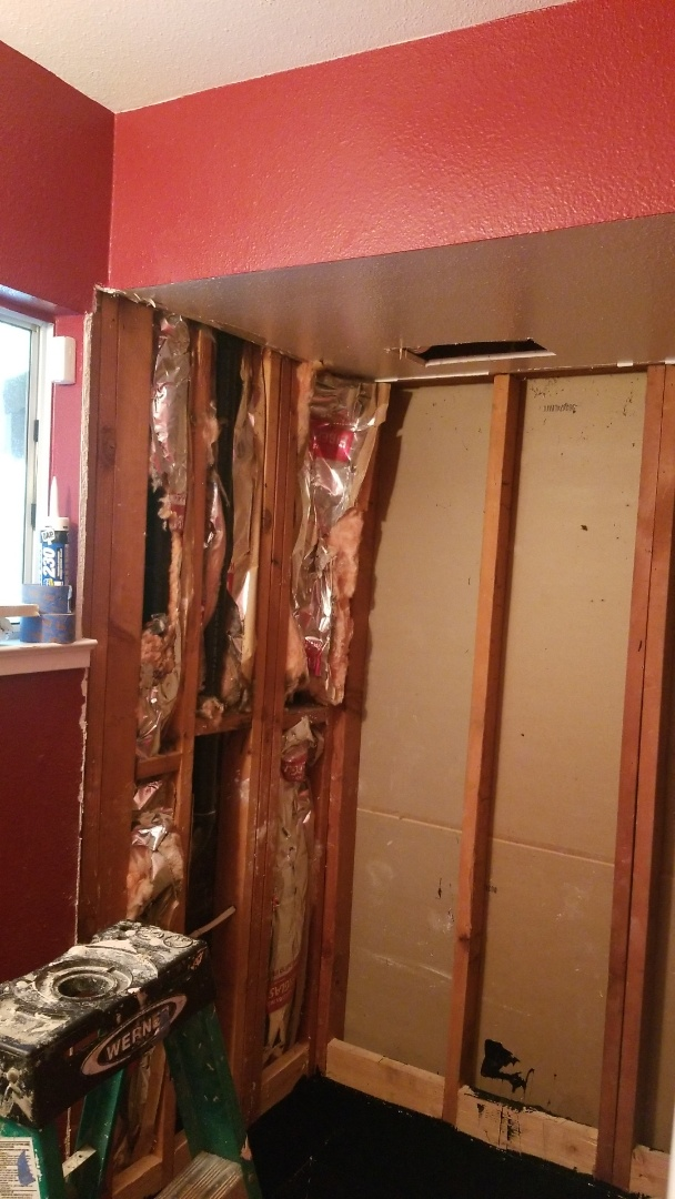 Carmichael, CA - starting a new bathroom
