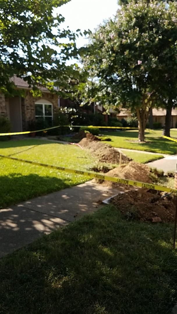 Arlington, TX - New yard services