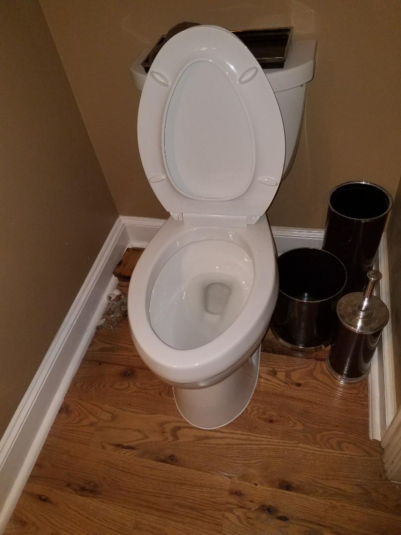 Unstop toilet and fix shower leak