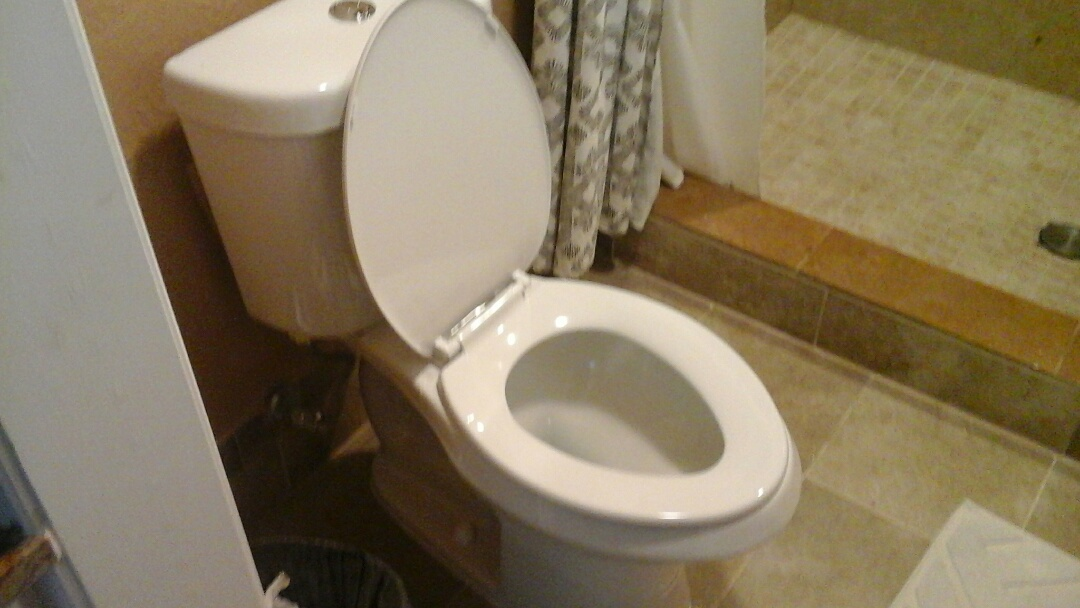 Rowlett, TX - Install toilet, replace toilet