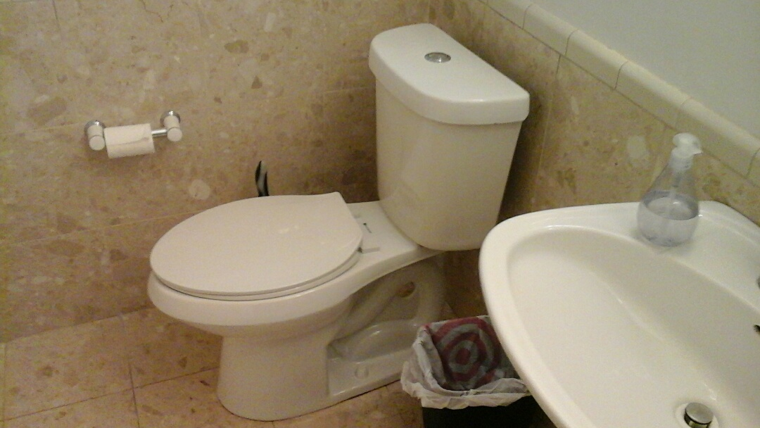 Dallas, TX - Repair toilet, replace shower head and arm
