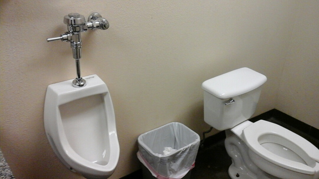 Cedar Hill, TX - Repair urinal and toilet