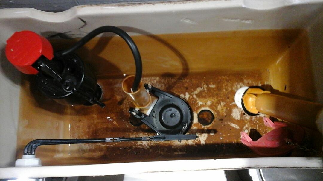 Midlothian, TX - toilet repair