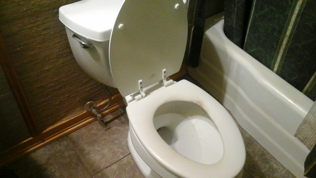 Dallas, TX - Pull toilet unclog sewer