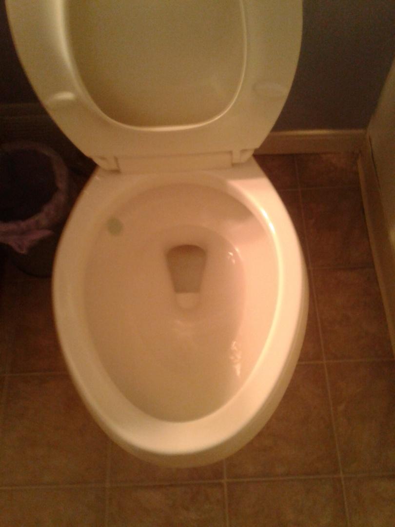 Midlothian, TX - Stopped up toilete