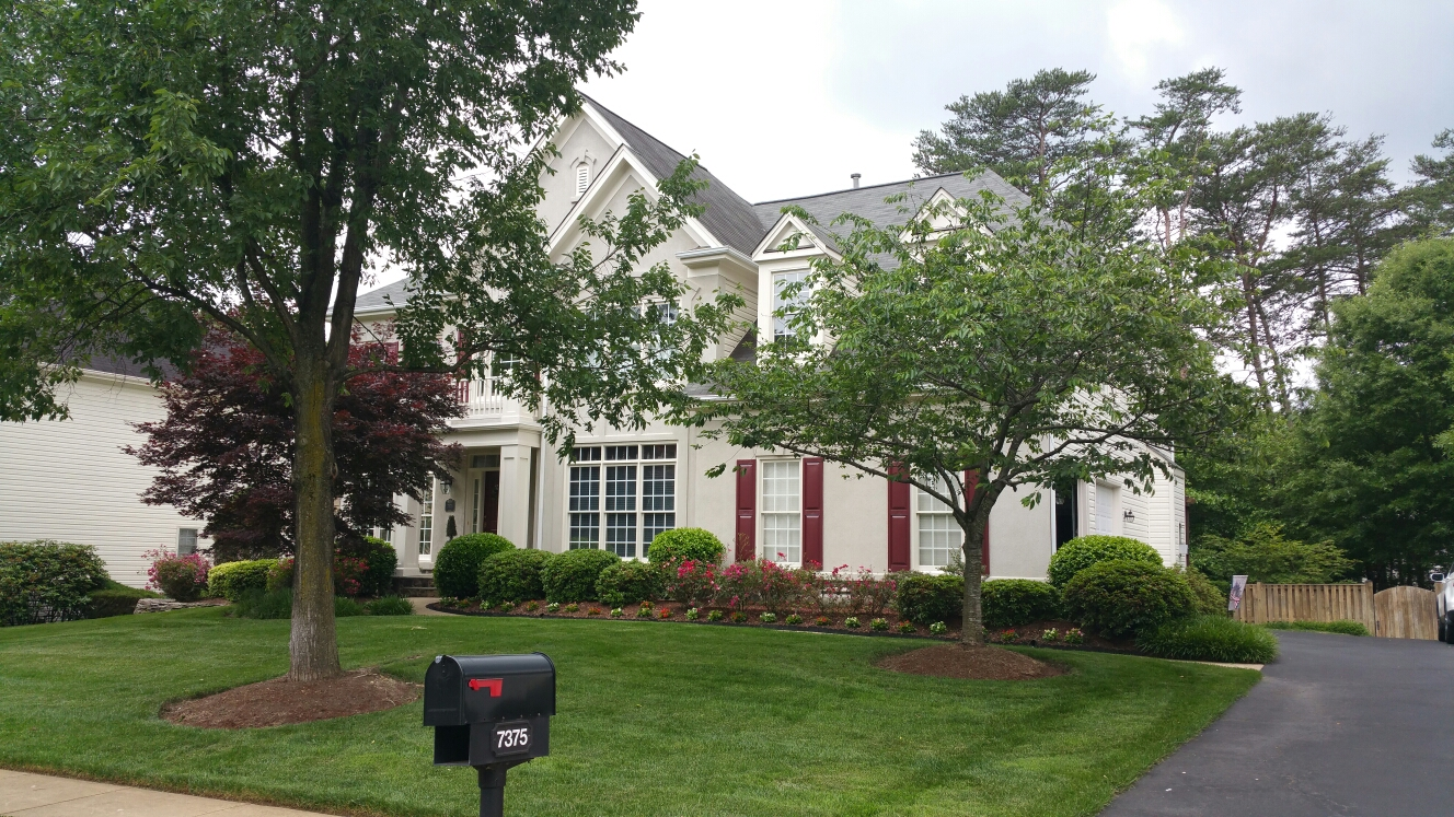 Springfield, VA - Full roof replacement. Replace 3 casement windows. Replace patio door and screen