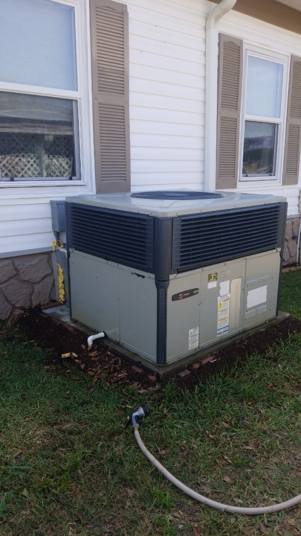 Lakeland, FL - Performed annual maintenance in foxwood Lakeland fl.