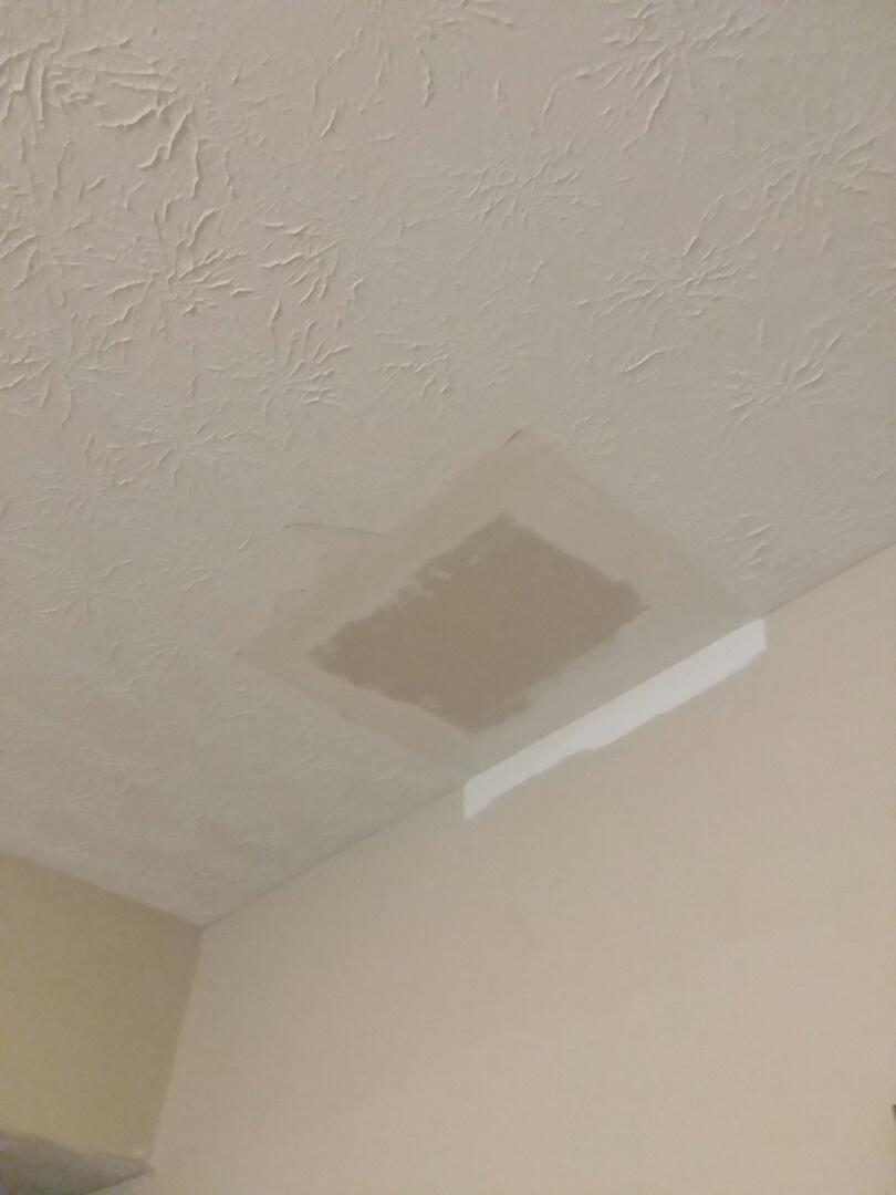 Prattville, AL - Stomp ceiling repair, Painting- Prattville, AL