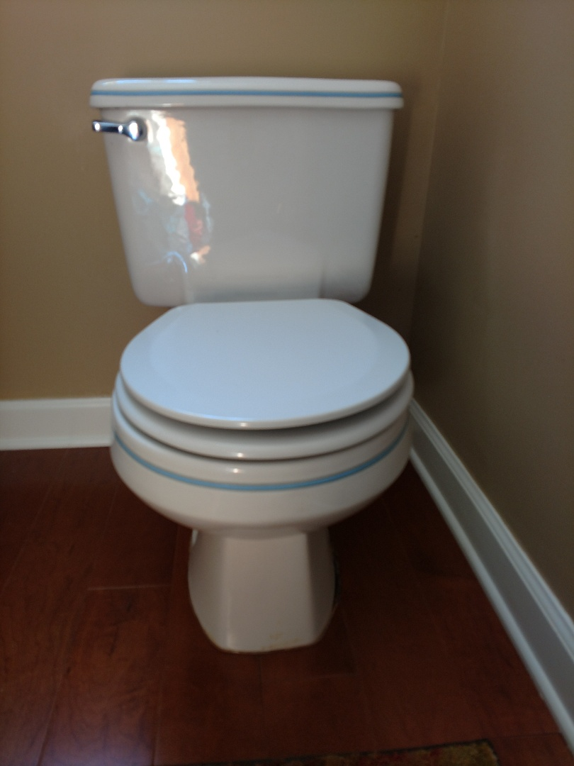 Shoreview, MN - Toilet repair