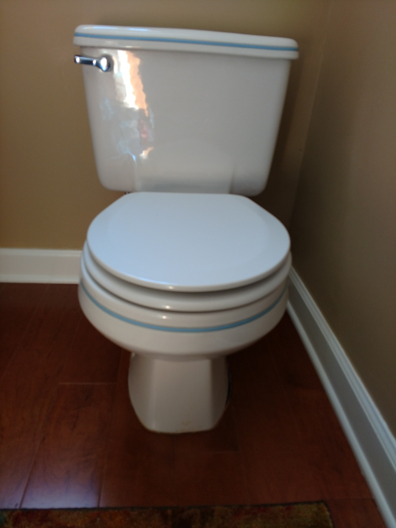 Shoreview, MN - Shoreveiw. Toilet repair