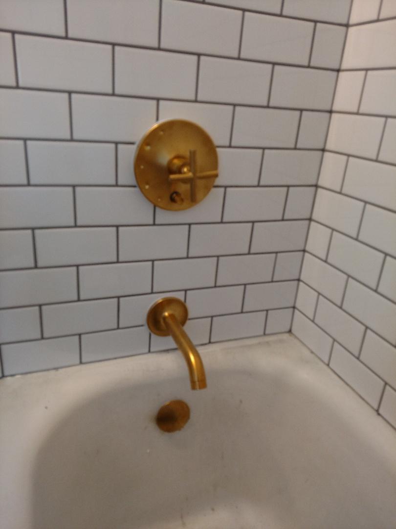 Minneapolis, MN - Minneapolis. Tub and shower faucet