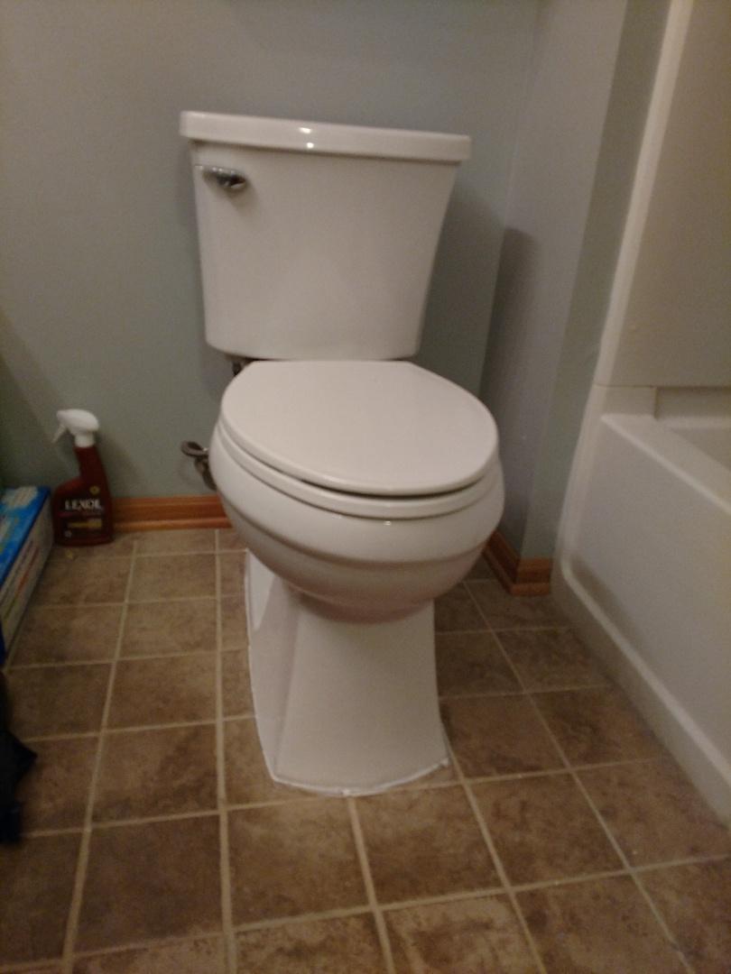 Minneapolis, MN - Toilet flange repair