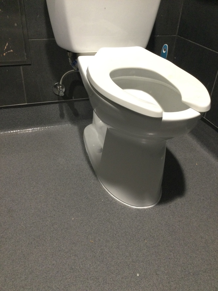 Pulled and reset a leaking toilet.