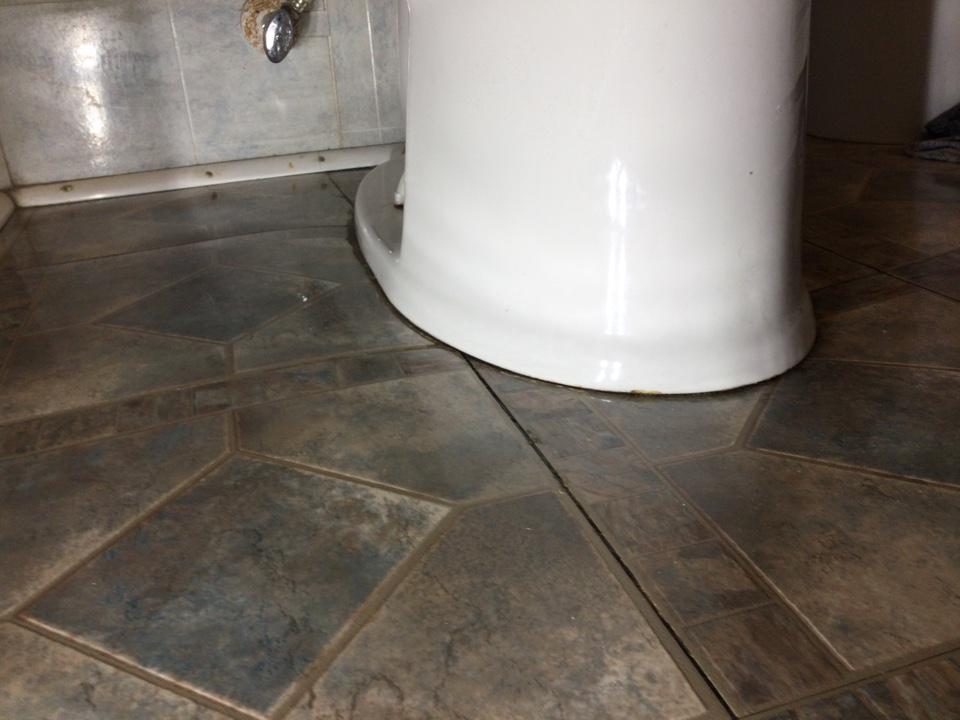 Santa Cruz, CA - Toilet leak investigation.
