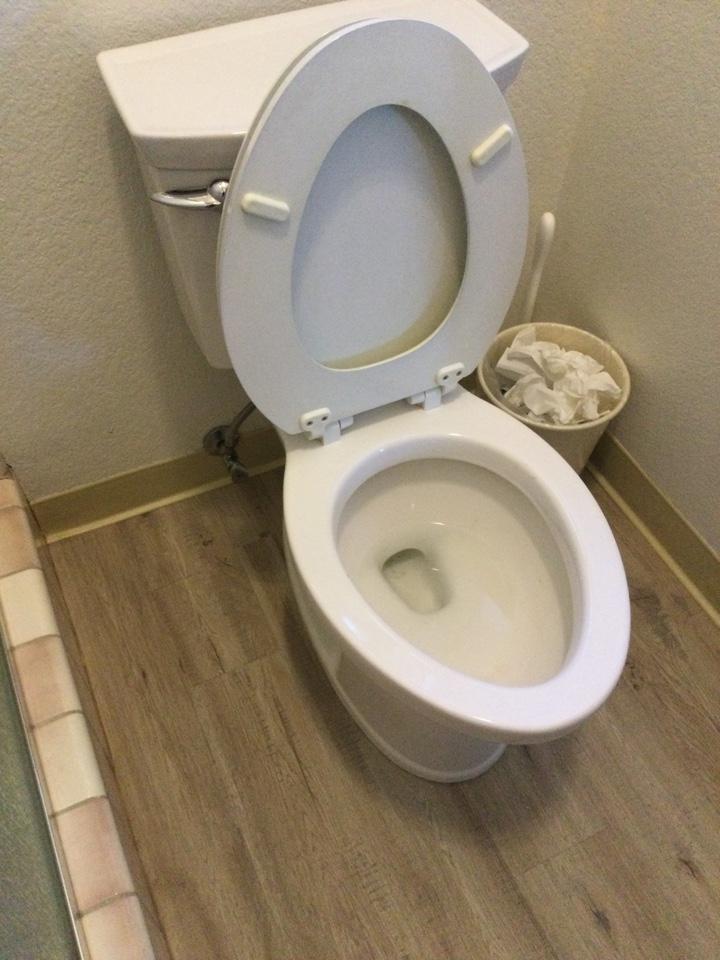 Santa Cruz, CA - Cleared plugged toilet.