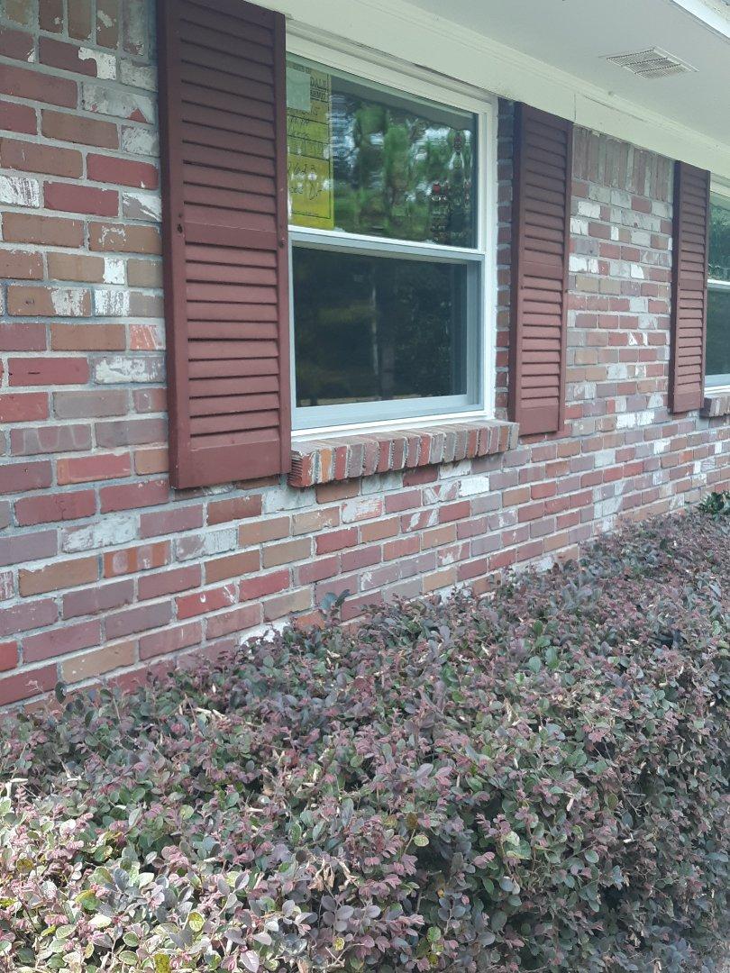 Robertsdale, AL - Window installing
