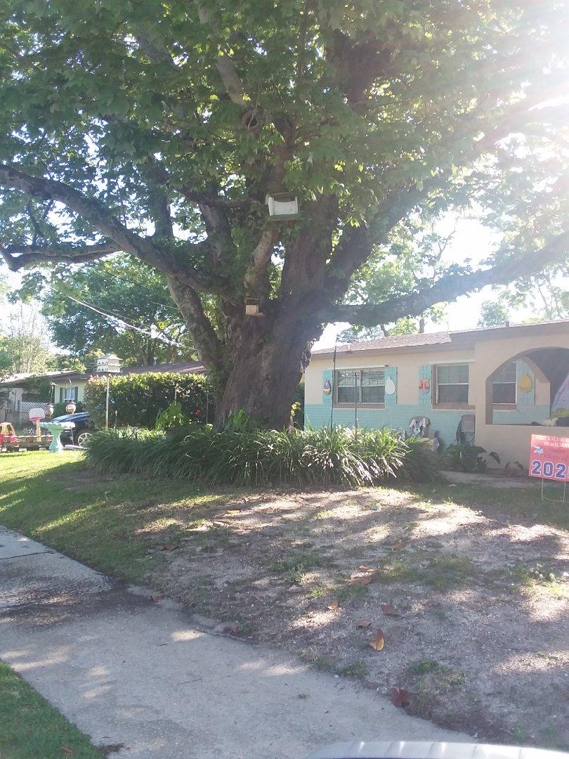 Mary Esther, FL - Viwinco impact