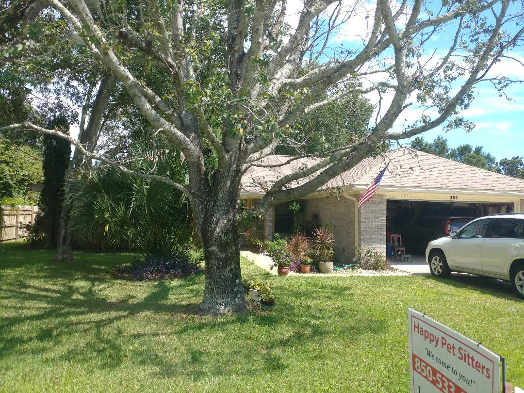 Mary Esther, FL - We are talking about new windows, impact