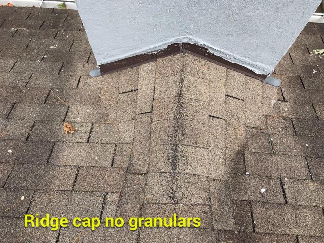 Marietta, GA - This homeowner is experiencing typical granular loss on an old 3 tab roof.