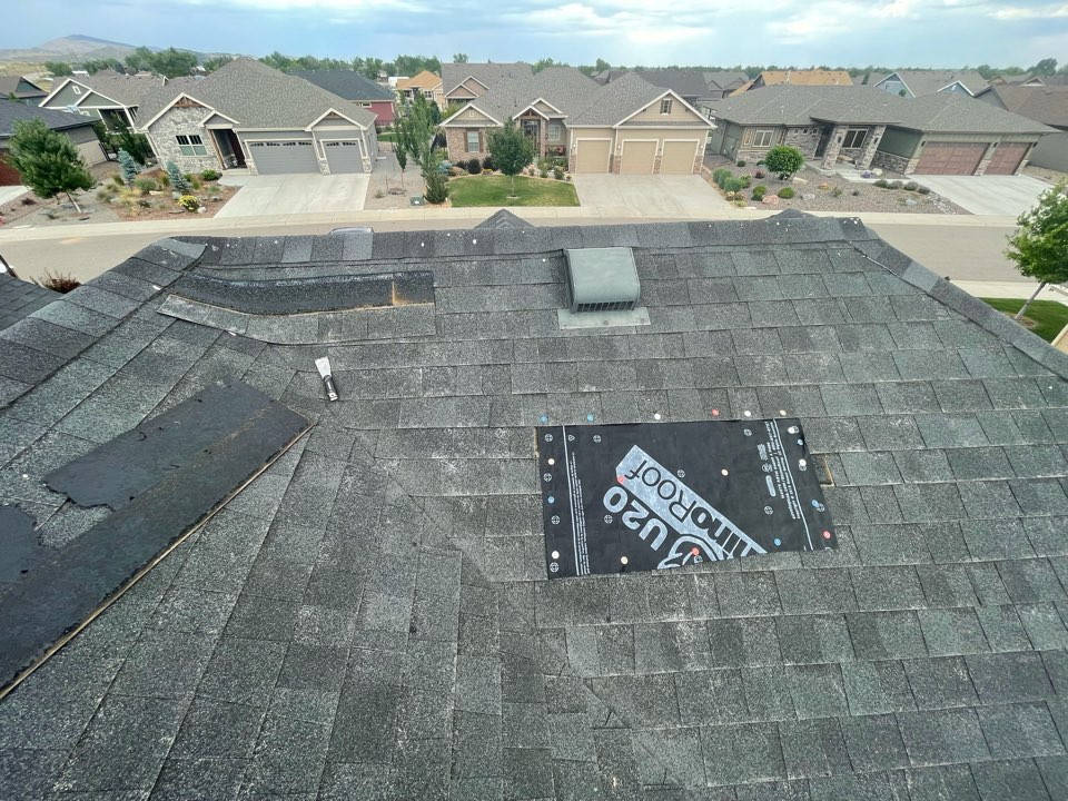 Loveland, CO - The roof we are working on here has a Tamco shingle system. These shingles have a manufacture defect, we are working with the manufacture to assist in replacing this entire roof due to a manufacture defect.