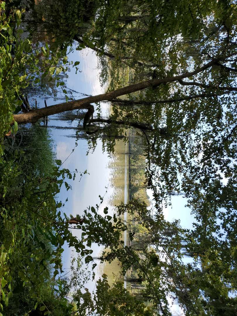 Prattville, AL - We are on a beautiful lot on the river doing a boundary and flood certificate!