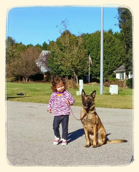 Raleigh, NC - Annie is enjoying helping handlers of all ages learn how to better train and handle their dogs.