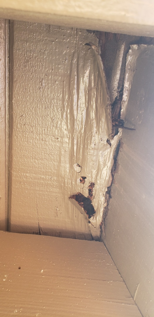 Santa Ana, CA - Termite treatment