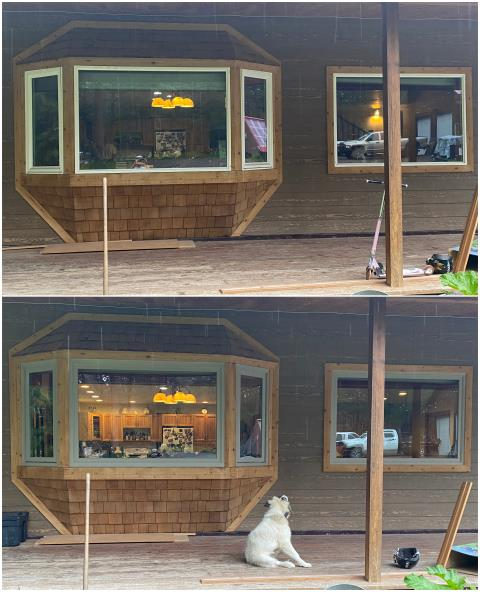 Kalispell, MT - We replaced this Bay & Picture window for this customer in Kalispell! Looks like Fido approves!!