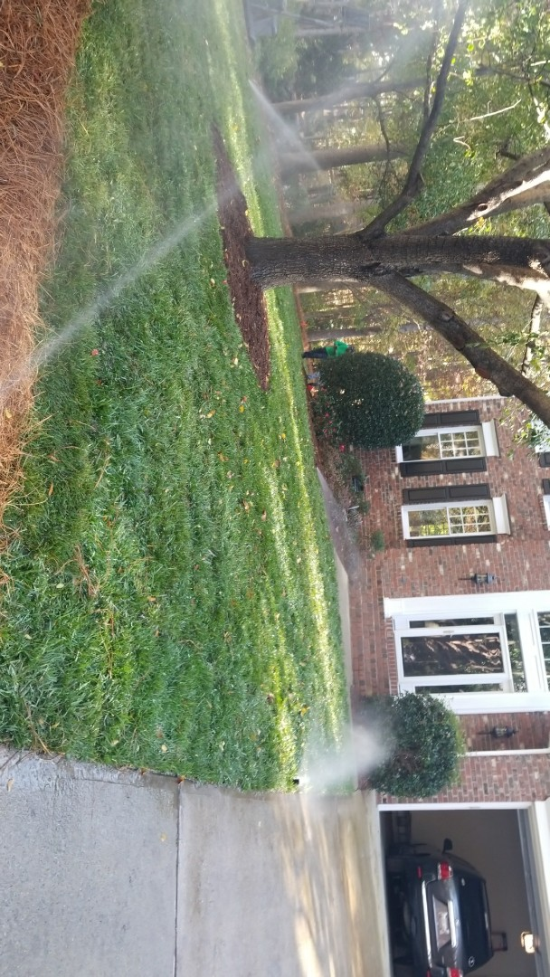 Cary, NC - We just finish putting mulch and new sod with the irrigation
