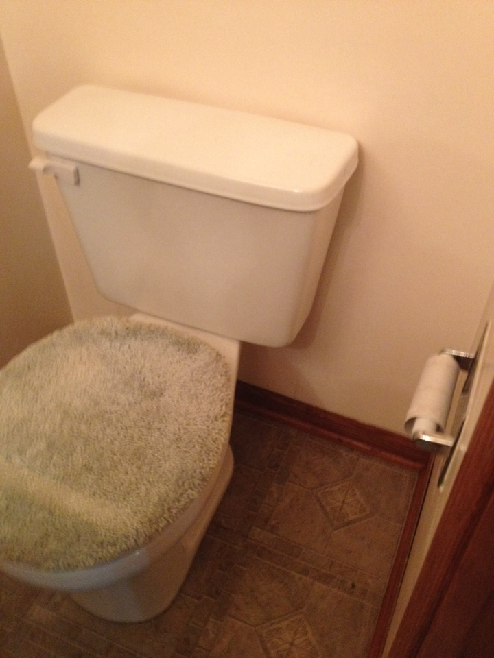 Naperville, IL - Rod main line from toilet