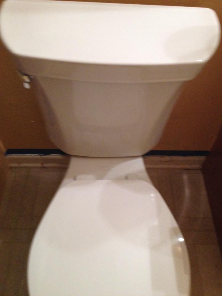 Naperville, IL - Auger toilet had blockage