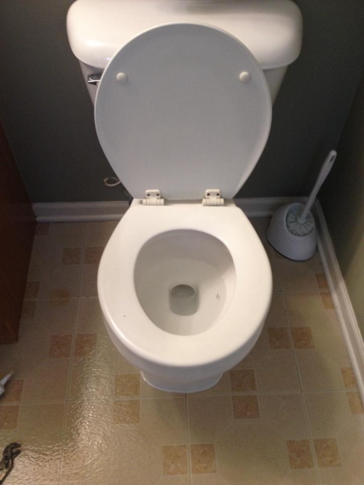 Bolingbrook, IL - Toilet repair