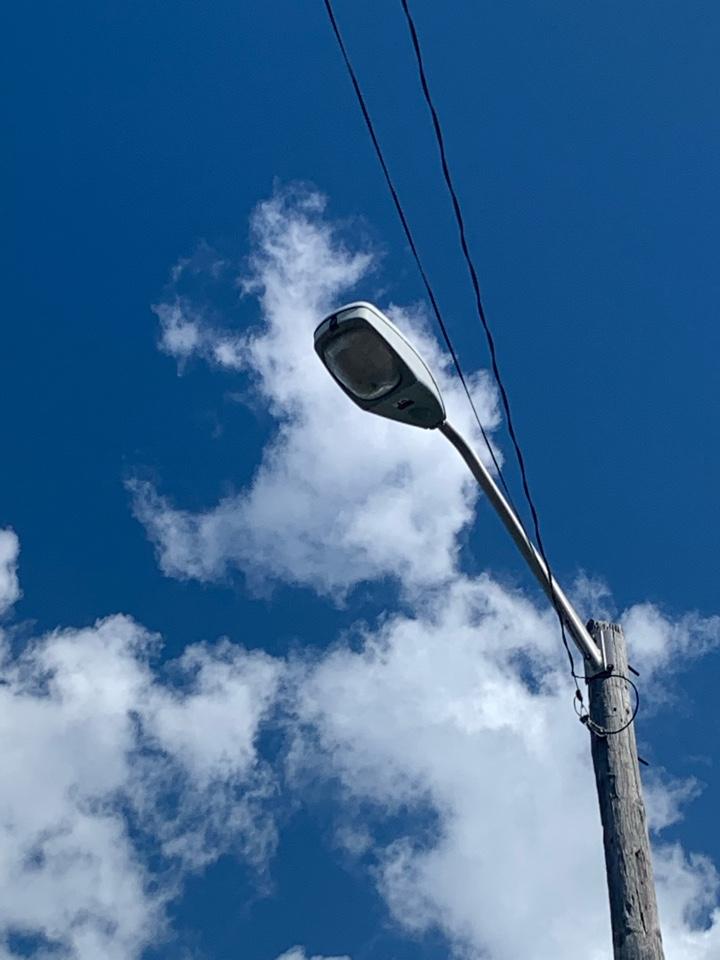 Serviced outdoor light poles