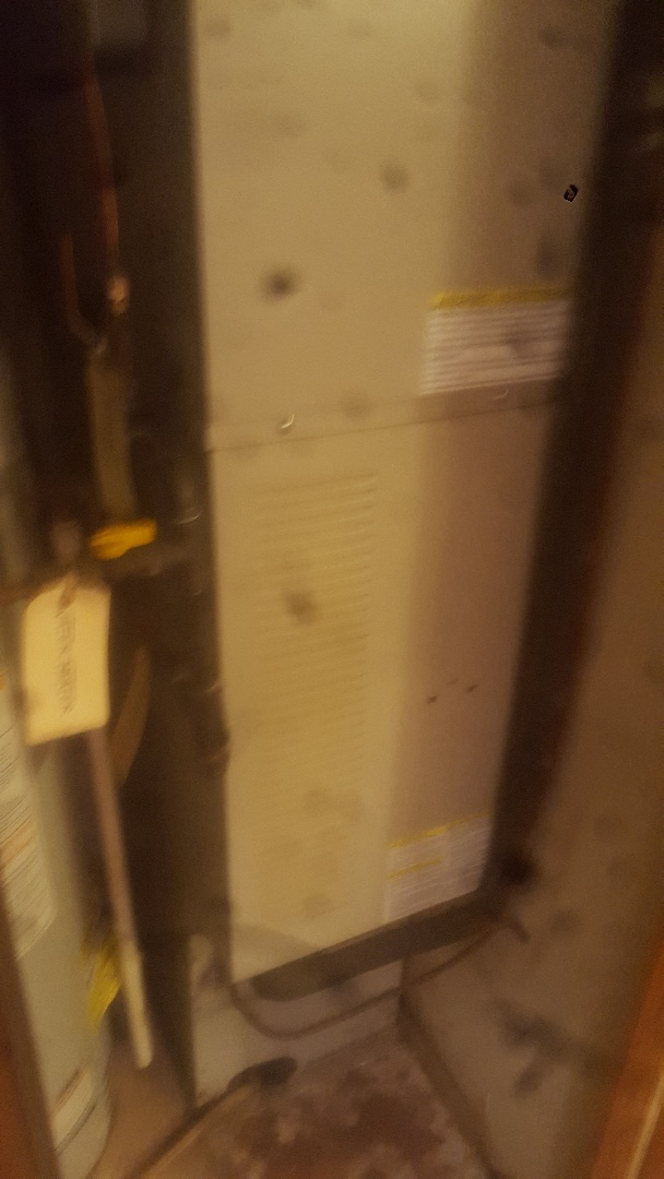 Champlin, MN - Furnace service repair