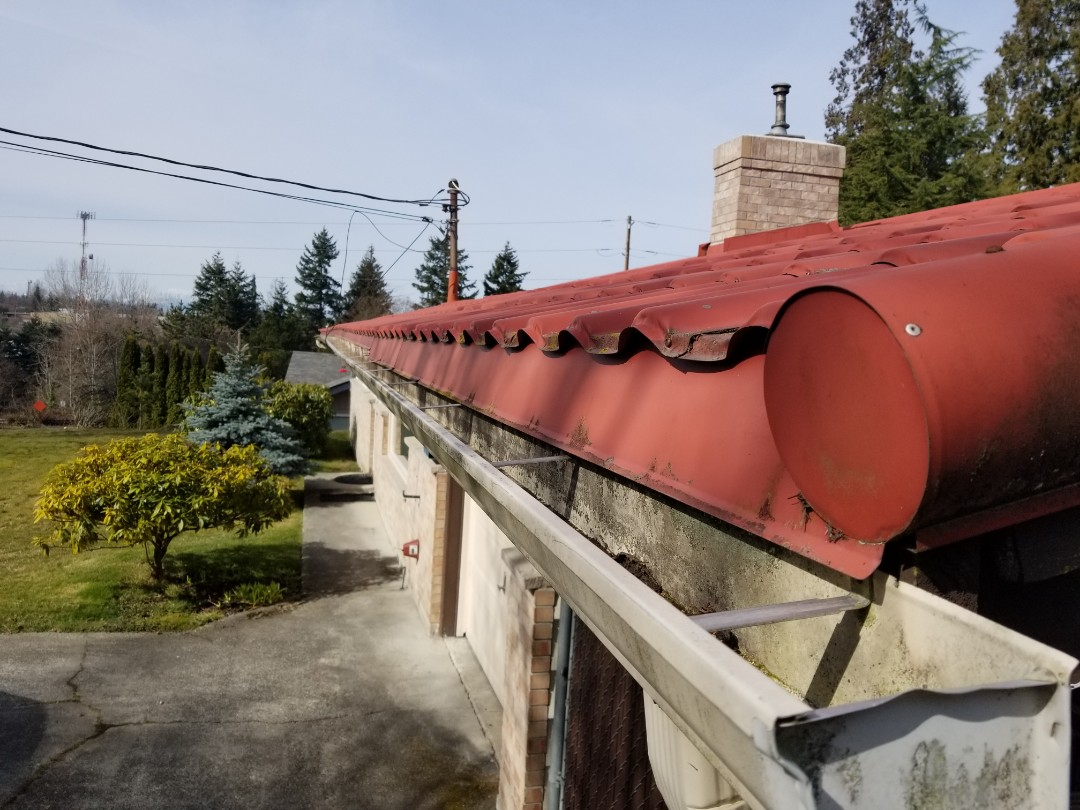 Everett, WA - Roof and gutter customer