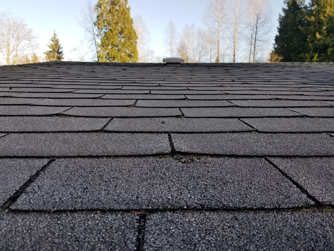 Mountlake Terrace, WA - Bidding a replacement composite roof in the Lake Stevens area today. Also talked about metal Roofing for a low slope roof
