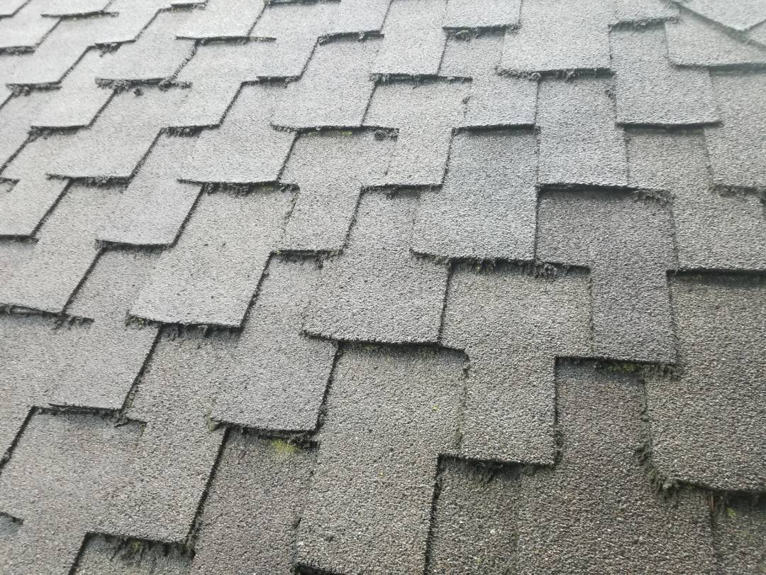 Mountlake Terrace, WA - Mountlake Terrace and Redmond Roofing bids for asphalt shingles. Free estimates for the best Roofing company in the Pacific northwest