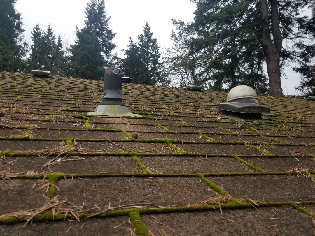 Lake Forest Park, WA - Free estimate for a roof project in Lake Forest Park. Call State Roofing today to get the Best roofing contractor in the region