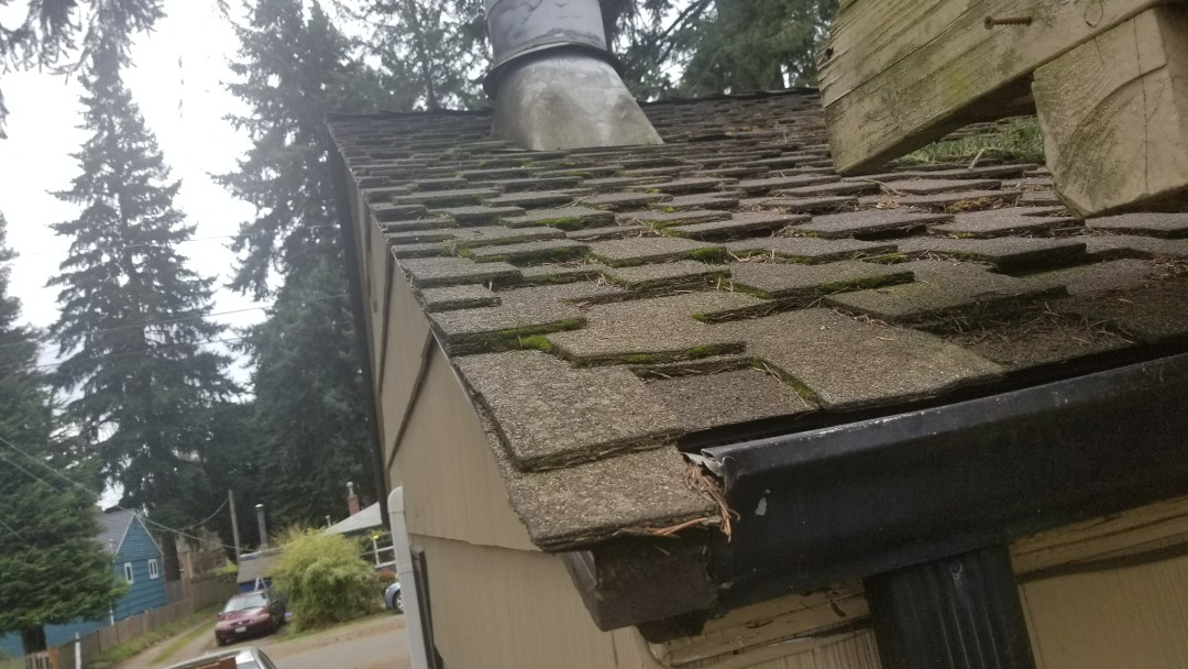 Seattle, WA - Mossy Presidential Shingle. Not so lifetime roofing.... Go metal!